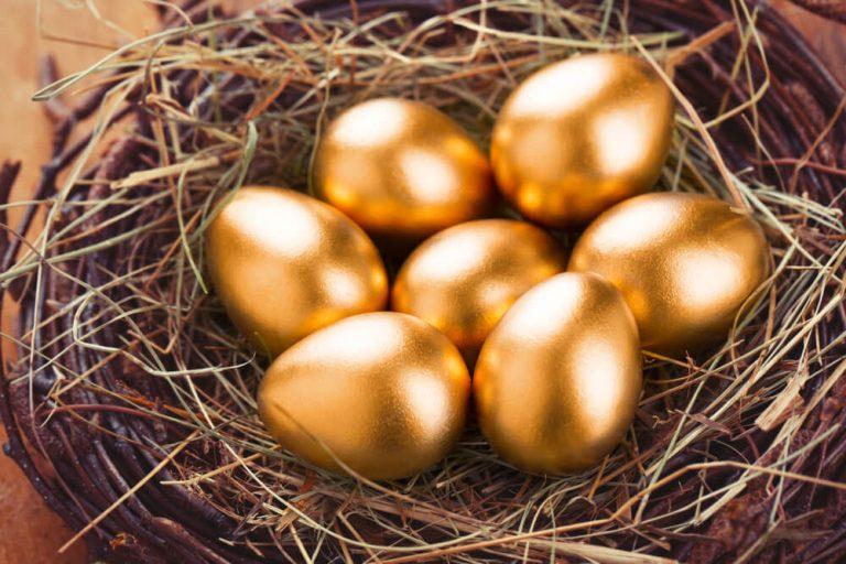 nest egg family law Toronto